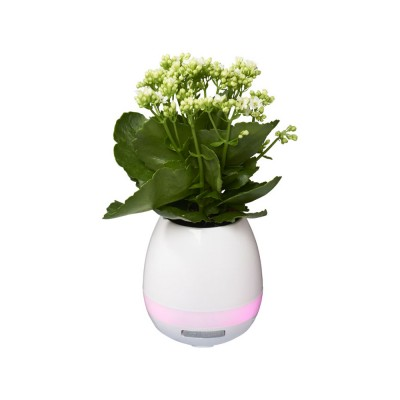 Динамик Green Thumb Flower Pot с Bluetooth®